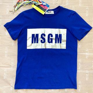 エムエスジイエム(MSGM)のMSGM Tシャツ ブルー シルバー ロゴTシャツ(Tシャツ(半袖/袖なし))