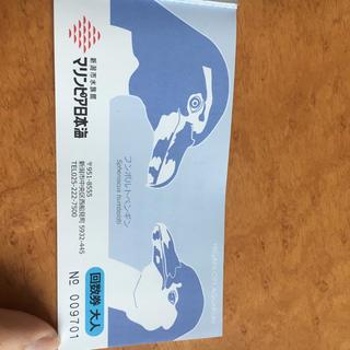 マリンピア日本海 水族館 チケット 大人1枚