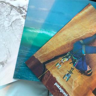 パタゴニア(patagonia)のパタゴニア カタログ 2019 3冊    patagonia(登山用品)