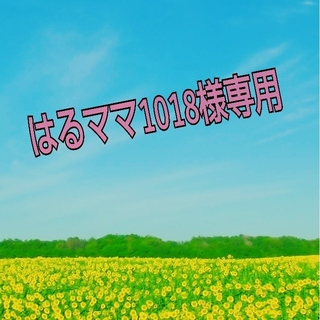 アンパンマン(アンパンマン)の☆はるママ1018様専用☆(キーホルダー/ストラップ)