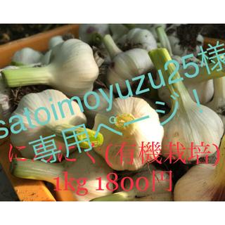 にんにく(野菜)