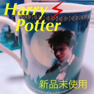ユニバーサルスタジオジャパン(USJ)の新品箱付き ハリーポッター マグカップ (グラス/カップ)