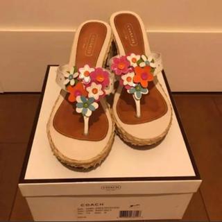 コーチ(COACH)のコーチ☆夏サンダル☆24.5(サンダル)