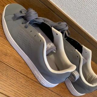 アディダス(adidas)のアディダススニーカー★23.5センチ★グレー★NIKE PUMANB(スニーカー)