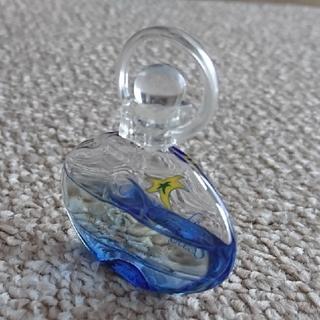 サルヴァトーレフェラガモ(Salvatore Ferragamo)のincant bliss 香水(香水(女性用))