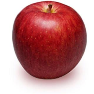 アップル(Apple)のりんご 10000(その他)