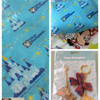 Disney - 💖 nm様 専用 💖 TDLポーチ&ハンカチ&バッグチャーム