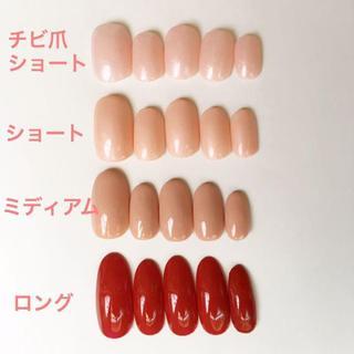 ベーシックネイルチップ コスメ/美容のネイル(つけ爪/ネイルチップ)の商品写真