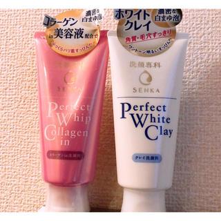 洗顔専科 パーフェクトホイップセット