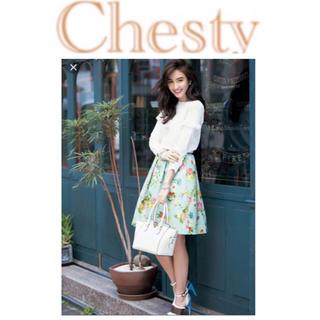 Chesty - 【カタログ多数掲載・入手困難色】チェスティ 小鳥 スカート ワンピース ブルー