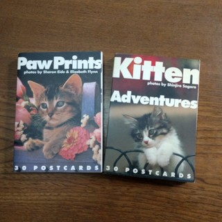 Paw Prints, Kitten Adventures