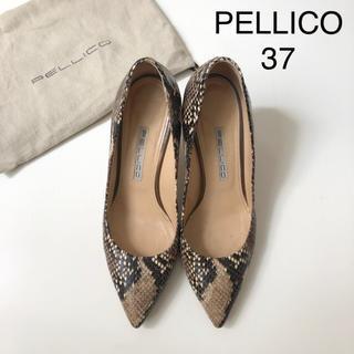 PELLICO - ペリーコ パイソン柄パンプス ★ 37 裏張り済み