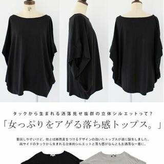 antiqua - 綿100     Tシャツ