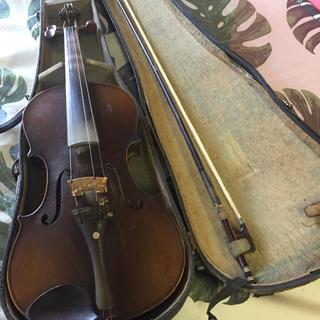 マサキチスズキ バイオリン W2
