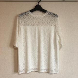 しまむら - 【4L】レーストップス 半袖 ホワイト【大きいサイズ】