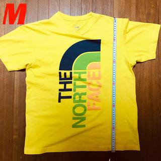 ザノースフェイス(THE NORTH FACE)のザノースフェイス 人気のデカロゴ Tシャツ (M) (Tシャツ/カットソー(半袖/袖なし))