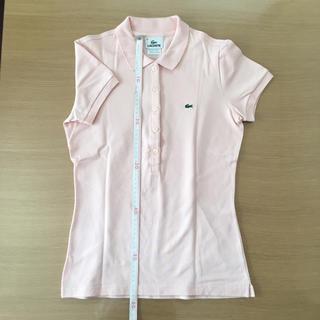 LACOSTE - ラコステ ポロシャツ サイズ38