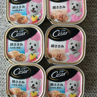 CASAR - 犬用  フード