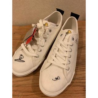 ZARA - ZARA SNOOPY sneaker 38/39