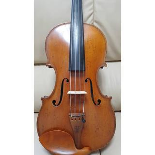 バイオリン petrus guarneri
