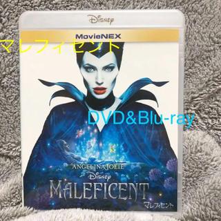 Disney - マレフィセント / 実写 / DVD / Blu-ray