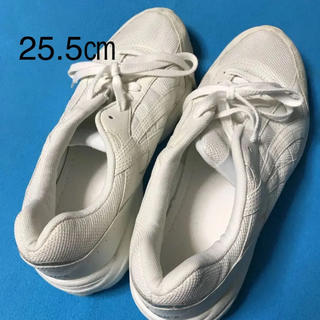 asics アシックス 運動靴 靴(スニーカー)