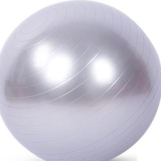 バランスボール (シルバー) ヨガボール 55cm ヨガ 空気入れ(おまけ)付き(ヨガ)