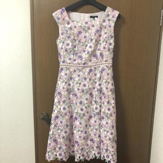 トッカ(TOCCA)の今季美品♡TOCCA screen starドレス(ひざ丈ワンピース)