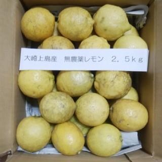 大崎上島産 無農薬レモン 2.5kg(フルーツ)