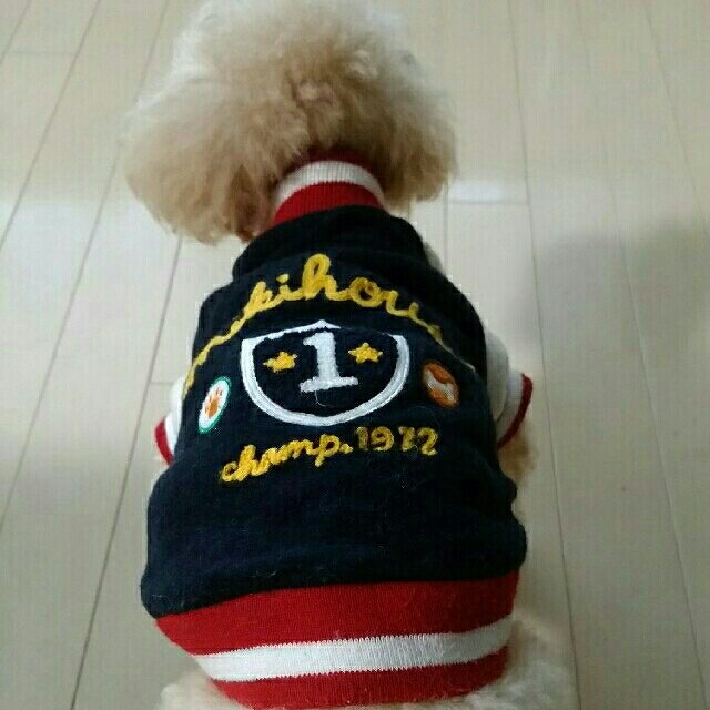 mikihouse(ミキハウス)のMIKIHOUSE🐶お洋服 その他のペット用品(犬)の商品写真