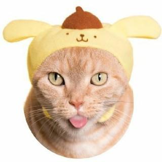 サンリオ(サンリオ)の猫のかぶり物 ポムポムプリン(猫)