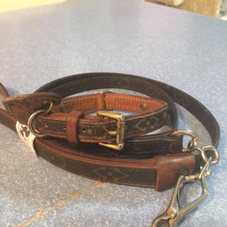 ルイヴィトン(LOUIS VUITTON)のルイヴィトン   ペット用   首輪&リード(犬)
