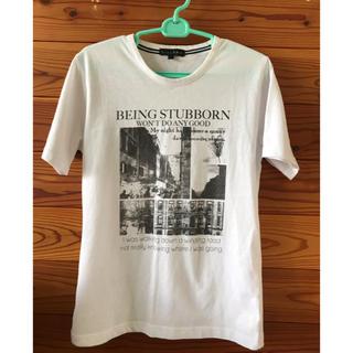 シマムラ(しまむら)の【男女兼用】VILLAND Tシャツ Mサイズ(Tシャツ/カットソー(半袖/袖なし))