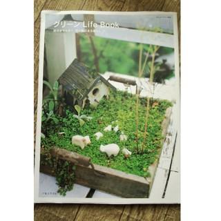 シュフトセイカツシャ(主婦と生活社)の中古本 グリーンLifeBook 多肉や花や緑のある暮らしを提案(その他)