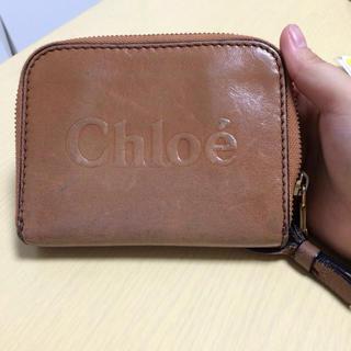 クロエ(Chloe)のchloe 二つ折り 箱あります(折り財布)