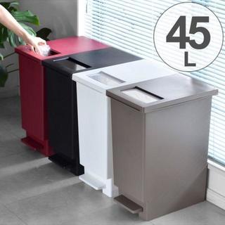 ダストボックス ゴミ箱 プッシュ&ペダル フタ付き ペダル キッチン