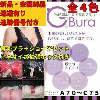 ☆★割引有り★☆【A70~C75】育乳ナイトブラ+ショーツセット(ブラ)
