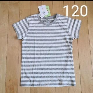 ニシマツヤ(西松屋)の◆新品◆オーガニックTシャツ◆120◆(Tシャツ/カットソー)
