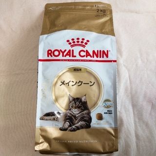 ROYAL CANIN - ロイヤルカナン メインクーン 2kg☓2