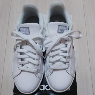 adidas - アディダス バルクリーンW 24cm