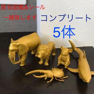 小学館 - 小学館の図鑑NEO 金ぴかフィギュア