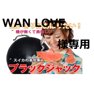 WAN LOVE様専用 ③最高級・最高品質のスイカ【ブラックジャック】(フルーツ)