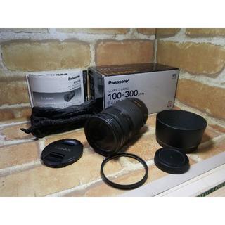 Panasonic - LUMIX G VARIO 100-300mm F4.0-5.6