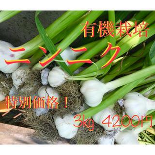 everyday78様   専用(野菜)