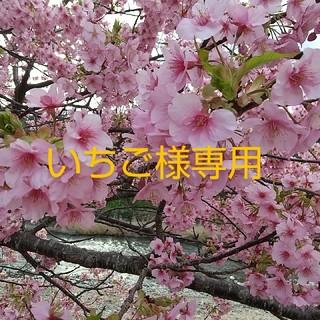 【E75】【新品】【タグ付き】ブラ&ショーツセット(ブラ&ショーツセット)