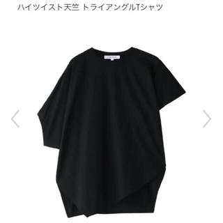 ENFOLD - エンフォルド ハイツイスト天竺 トライアングルTシャツ Tシャツ