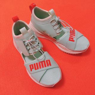 プーマ(PUMA)のpuma fenty プーマ フェンティ 23cm グリーン スニーカー(スニーカー)