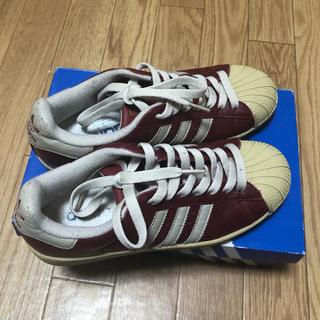 adidas - アディダス レザー スニーカー 23.5cm