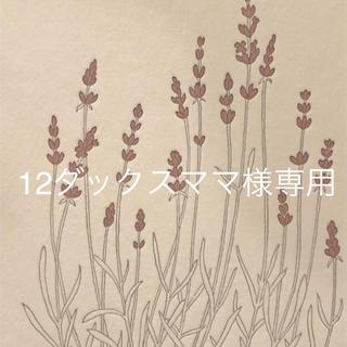 12ダックスママ様専用  カランコエ 黒兎③(その他)