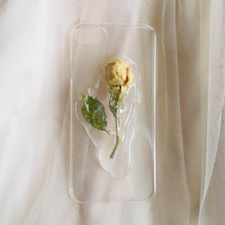 カスタネ(Kastane)のdried flower iphone case 6〜8  rose(スマホケース)